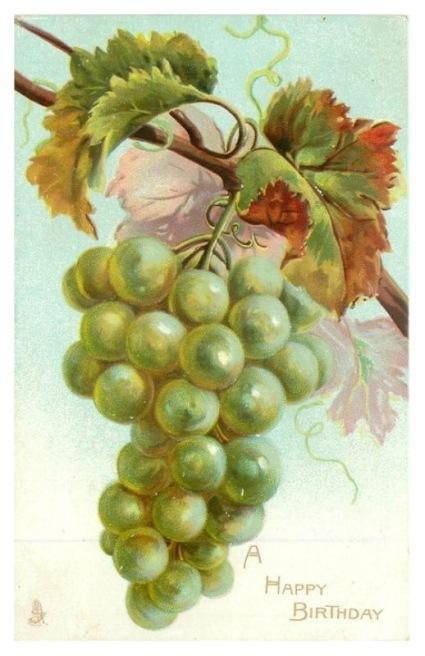 0 uva