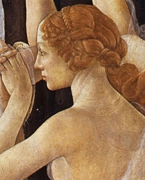 botticelli le tre gc