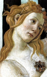 botticelli le tre gs